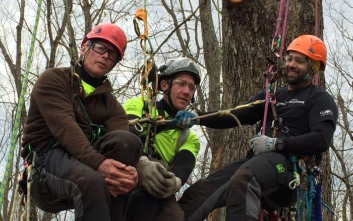 New Leaf Arboriculture Arborist and Tree Service - Travis simulating a rescue