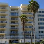 Gulf Shore Dr, Destin, Florida - Washingtonia Palm 02